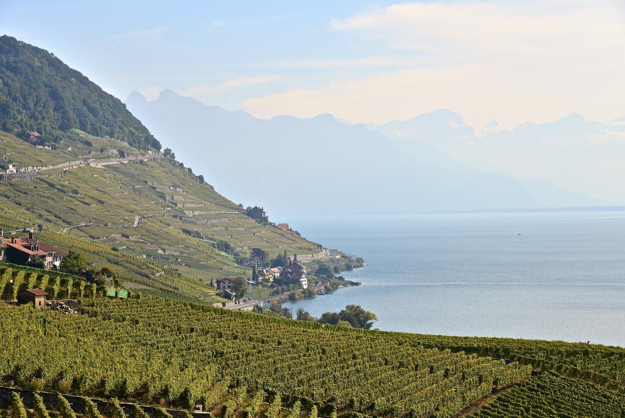 Blick über den Genfer See auf die Walliser Alpen