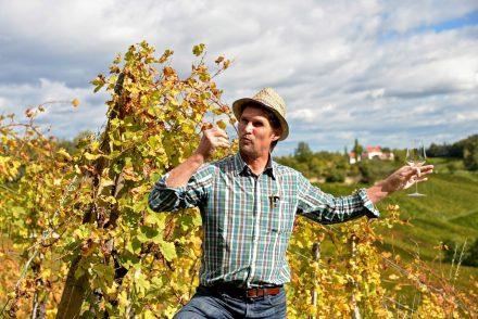 Biologischer Weinbau in der Südsteiermark